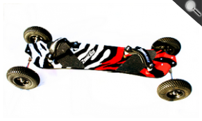 Zebra Board  Basic